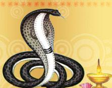 naga-panchami-festival