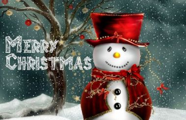 merry-christmas-greeting-cards1